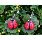 Unique handmade Ladybug earrings - red, black