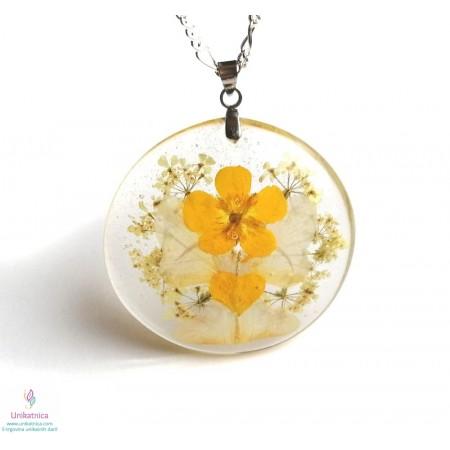 Simbolika in pomen cvetja - ogrlica, zlatice